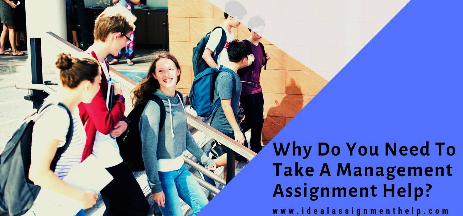 Why Do You Need To Take A Management Assignment Help?