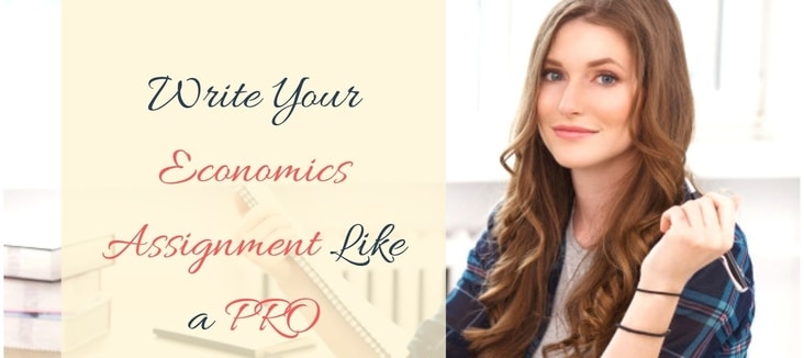 How to write your Economics assignment as a pro