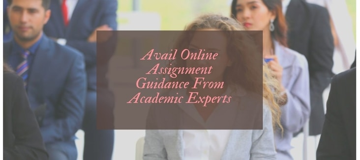 Why to Avail Online Assignment Guidance From Academic Experts?